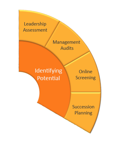 Identifying Leadership Potential wheel
