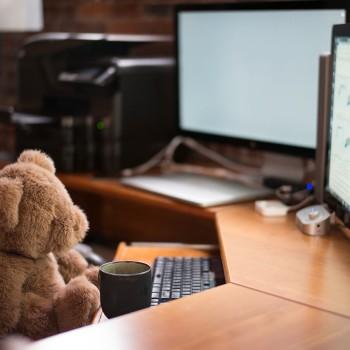 teddy bear work personality